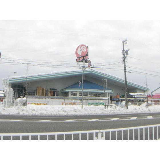 コメリハード&グリーン婦中店(739m)
