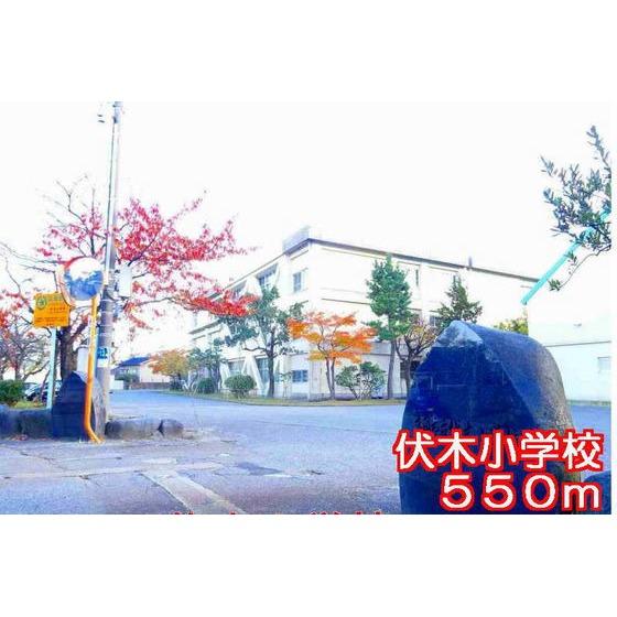 伏木小学校(550m)
