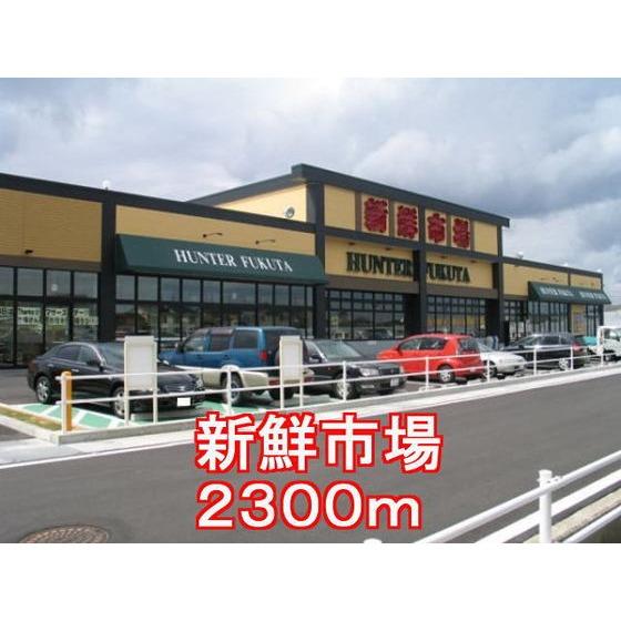 新鮮市場(2,300m)